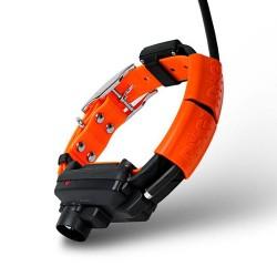 Collar adicional Dogtrace X30 -B